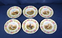 6 Vintage Antique Game Bird Plates Germany C.T. Porcelain China ca. 1860-1880