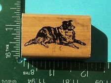 BORDER COLIE DOG Rubber Stamp by INKADINKADO  Pet Puppy