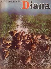 Rivista di Caccia  DIANA n° 13  del 1949