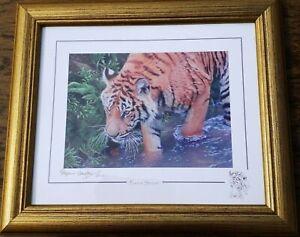 Tiger Print By Stephen Gayford - Forest Stream