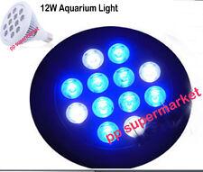 12W Royal Blue 450nm-455nm + Cold White 20000K LED Bulb Lamp Aquarium Light
