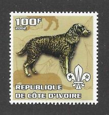 Dog Art Body Portrait Postage Stamp American Water Spaniel Cote D'Ivoire Mnh