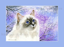 Ragdoll Cat Print Frosty Day by Irina Garmashova