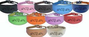 Italian Greyhound, Whippet, Greyhound, Leather Lurcher, Dog Collar Running Hound