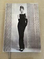Audrey Hepburn Hat Suedelux Blank Journal by New Holland