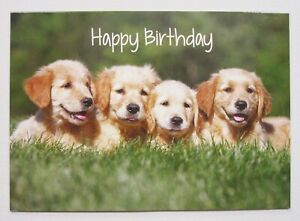 Happy Birthday Cute Puppies Dogs Greetings Card For Her/Kids by Cards For You