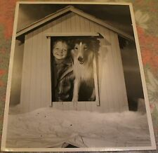 BUTCH JENKINS + LASSIE Oversized 10x13 DBL WEIGHT 1945 Photo CLARENCE BULL STAMP