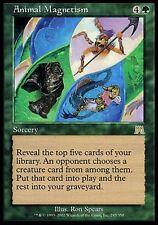 1x Animal Magnetism Onslaught MtG Magic Green Rare 1 x1 Card Cards