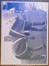 Alex Hanimann - Horsepark - Carina Plath - Kunstverein Münster - 2002 - Rare
