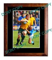DAVID POCOCK AUST WALLABIES 2011 WORLD CUP A3 PHOTO 1