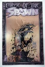 curse of the spawn 4  image comics