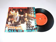 """NEW KIDS ON THE BLOCK - Call It What You Want - 1991 Dutch 2-track 7"""" Single"""