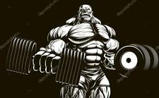 GAIN MUSCLE and MASS FAST (Gear)