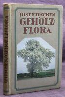 Fitschen Gehölzflora 1920 Naturwissenschaften Bäume Sträucher Umwelt Studium sf