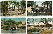 EGYPT SUEZ Fontaine de Moïse THE FOUNTAIN  4 VINTAGE POSTCARDS