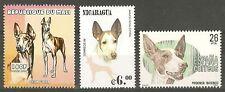 Rare Dog Art Postage Stamp Collection Ibizan Hound 3 Different Head & Body Mnh