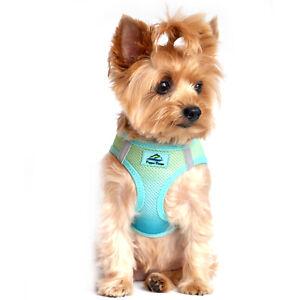 American River Choke Free Dog Harness Ombre Collection - Aruba Blue  XXS-3XL