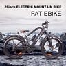 "TRIAD NAKTO  COMPACT 400W 26"" Fat eBike Electric Bike 48V Magnesium Alloy"