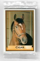 CIGAR - HORSE OF THE YEAR - DAILY RACING FORM 10 CARD HORSE RACING SET FROM 1996