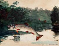 Leaping Trout by American Winslow Homer. Animals Repro Print on Canvas or Paper