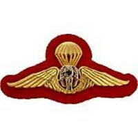 Foreign Thailand Military Jump Wing Badge Pin