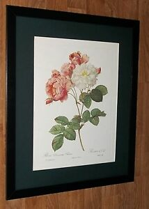 Vintage Rose wall art prints - 20''x16'', framed redoute wall art, redoute print