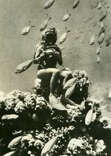 France Diver & Fishes Underwater photography Old Photo 1960
