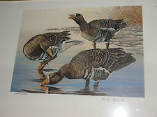 D.M. Smith #ed Ltd Edition signed 1987 Waterfowl Print & $5 Stamp: FAST SHIPPING