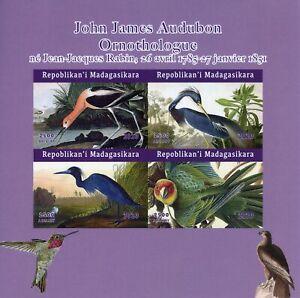 Madagascar Birds on Stamps 2020 MNH John James Audubon Art Parrots 4v IMPF M/S