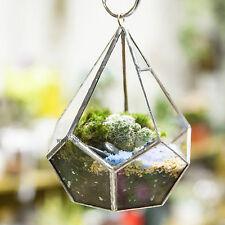 Modern  Diamond  Clear Glass Geometric Polyhedron Terrarium Hanging Air Planter