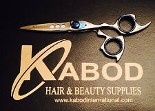 Professional Hair Cutting  Japanese Scissors Barber Stylist Salon Shears 6""
