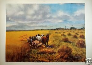 Horses Farmer Harvesting Wheat Print Western Wheat Field Color Lithograph 1927