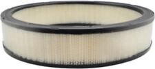 Air Filter Baldwin PA2002