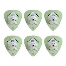 Bichon Frise Maltese Puppy Dog in House Novelty Guitar Picks Medium - Set of 6