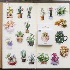 50 Watercolour Cactus Cacti Succulents Journalling Scrapbook Mini Box Stickers