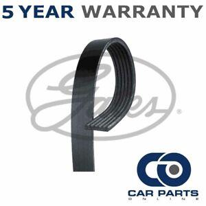 Gates V-Ribbed Belts Fits Ford Vauxhall BMW Volvo - GAT3984