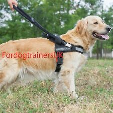 Dog Harness with Handle to Guide Visually Impaired People | Guide Dog Harness UK