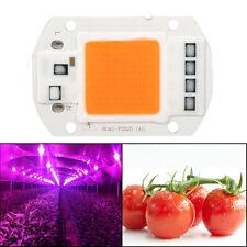 50W Full Spectrum COB LED Chip Growing Light Lampe Pour Hydroponique Plante 220V