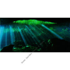 "TOP FIN UNDERWATER CAVE Aquarium Background Static Cling Film 18""x36"""