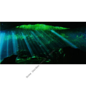 "TOP FIN UNDERWATER CAVE Aquarium Background Static Cling Film 18""x36"""