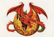 Temporary Tattoo, Dragon Tattoo, AGD234 02-12, Drache aus dem Ei