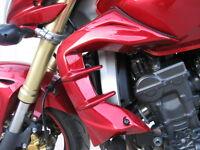 Honda Hornet 600 Escopas radiador tapas ecopes radiator cover Mod R
