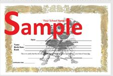 Martial Arts Taekwondo Karate Judo Hapkido Certificates Templates Diploma Cd