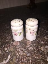 nippon antique hand painted salt and pepper shakers