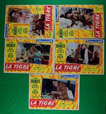 H22 LOTTO FOTOBUSTE  LA TIGRE STEWART GRANGER BARBARA STEEL RUSH JOHAR