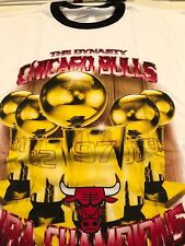 Vintage Chicago Bulls T shirt, Dynasty, Size XL