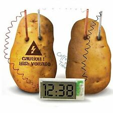 DIY Potato Clock Green Home Science Experiment Lab Project Kid Educational Toy