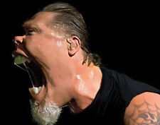 "Metallica James Hetfield 8.5 x 11"" Photo Print"