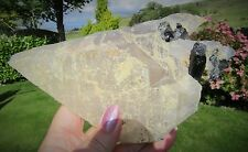 Himalayan Quartz Elestial Dog Tooth Point With Citrine & Black Tourmaline 989g