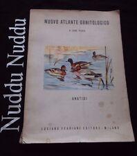 Nuovo atlante ornitologico, Anatidi - Dino Perco - Ferriani Editore, 1960